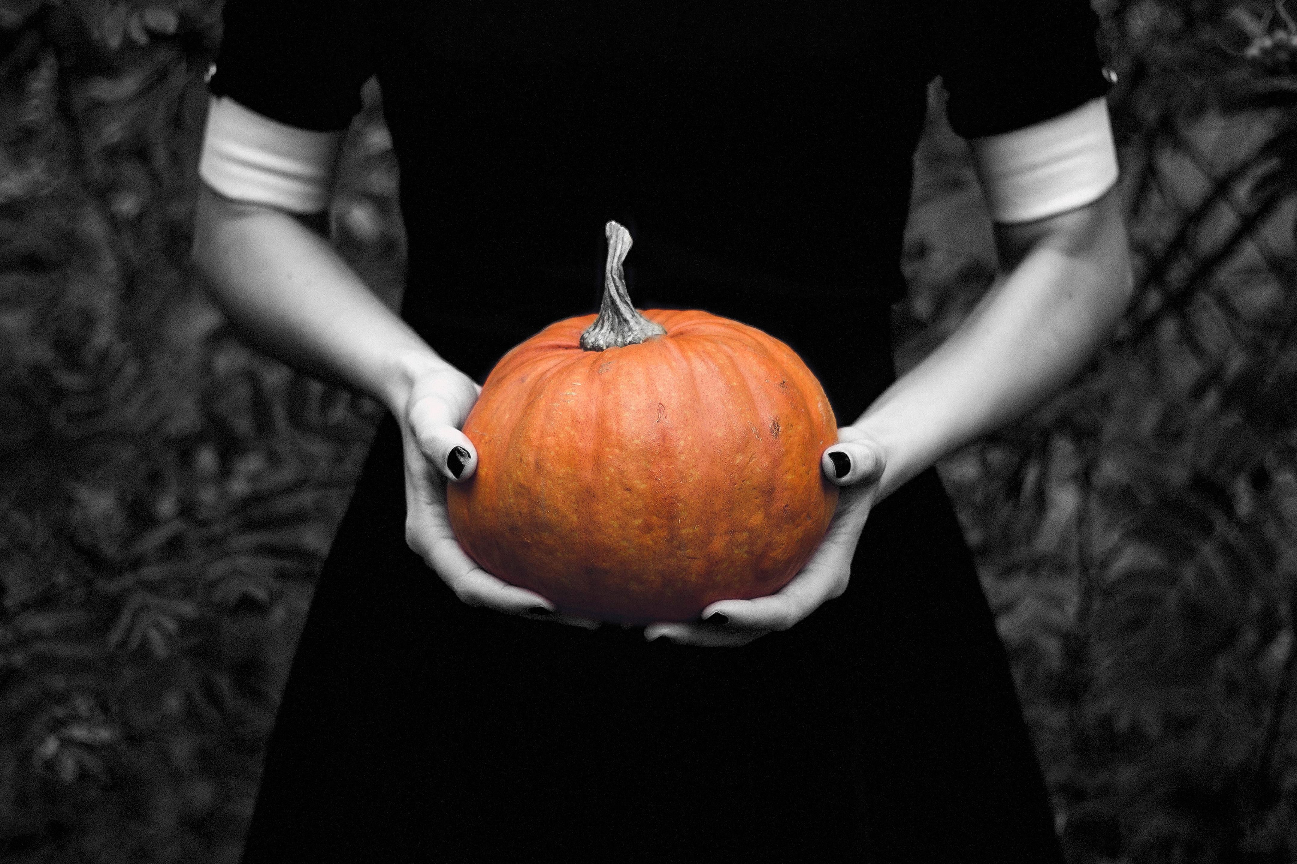 pumpkin-1713381